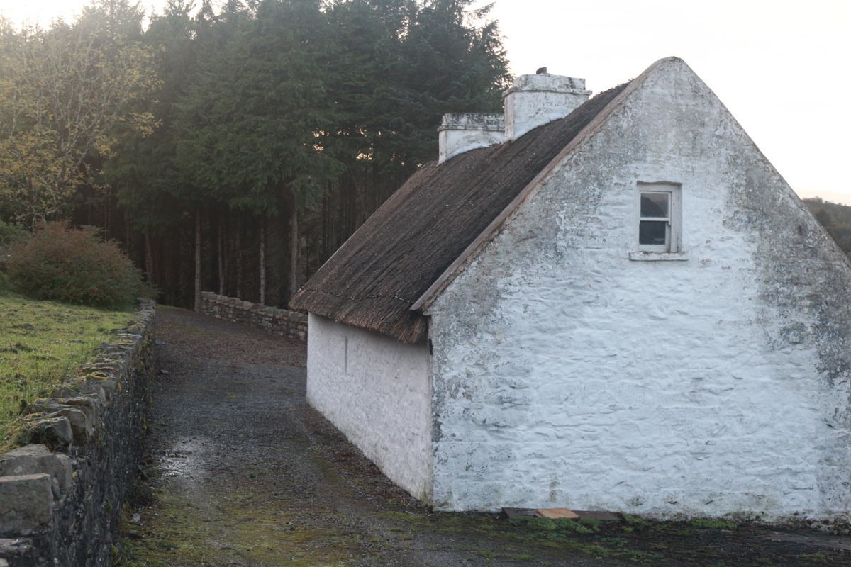 Sean MacDiarmada's House December 2011