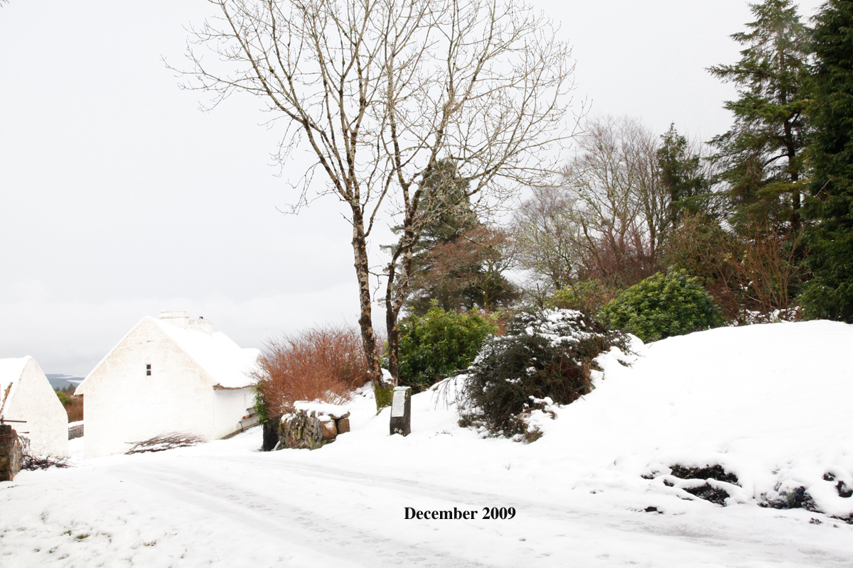Sean MacDiarmada's House December 2009